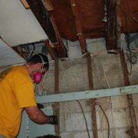 Mold Removal Davie FL